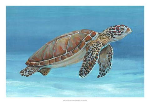Framed Ocean Sea Turtle I Print