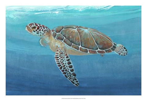 Framed Ocean Sea Turtle II Print