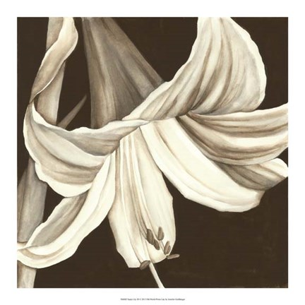 Framed Sepia Lily III Print