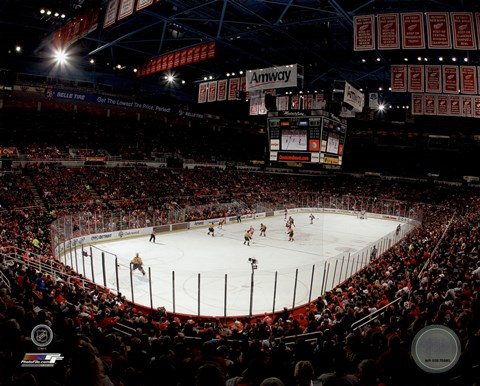 Framed Joe Louis Arena 2013 Print