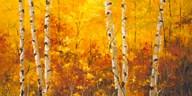 The Splender of Autumn  Fine Art Print