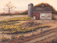Barn & Sunflowers I  Fine Art Print