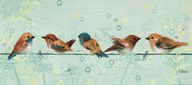 Five Birds On a Straight Wire  Fine Art Print