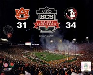 2014 BCS National Championship Florida State Seminoles vs. Auburn Tigers at the Rose Bowl  Fine Art Print
