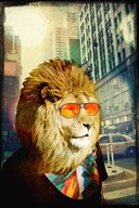 King Lion of the Urban Jungle  Fine Art Print