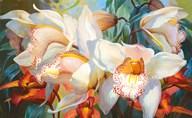 Orchid Fandango  Fine Art Print