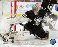 Marc-Andre Fleury 2013-14 Action Art