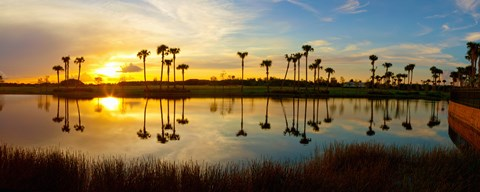 Framed Reflection of trees in water at sunset, Lake Worth, Palm Beach County, Florida, USA Print