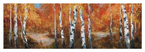Framed Autumn Birch II Print