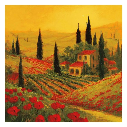 Framed Poppies of Toscano II Print