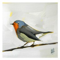 Robin on Wire  Fine Art Print