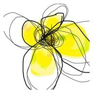 Yellow Petals Three  Fine Art Print