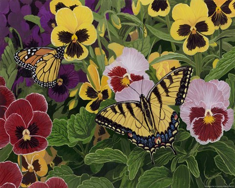 Framed Butterflies And Pansies Print