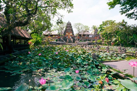Framed Water lilies in a pond at the Pura Taman Saraswati Temple, Ubud, Bali, Indonesia Print