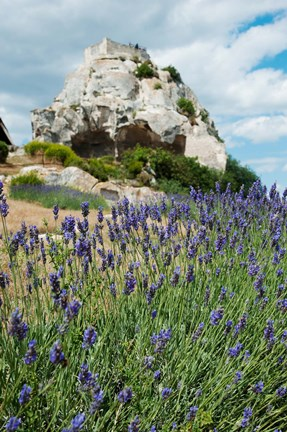 Framed Lavender field in front of ruins of fortress on a rock, Les Baux-de-Provence, Provence-Alpes-Cote d'Azur, France Print