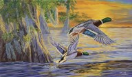Bayou Sunset  Fine Art Print