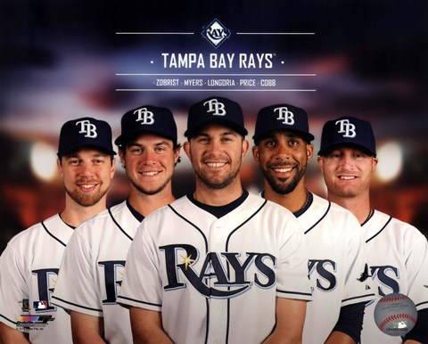 Framed Tampa Bay Rays 2014 Team Composite Print