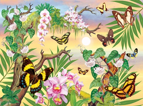 Butterflies Up In The Canopy Fine Art Print By Rosiland