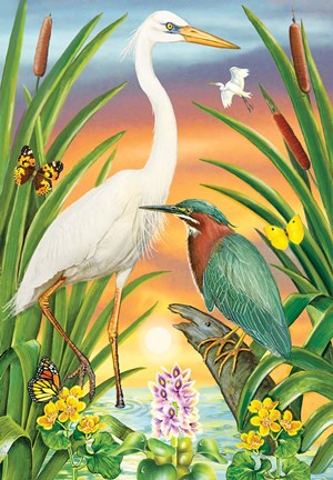 Framed Green And White Herons Print