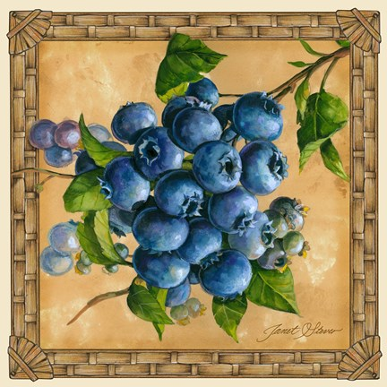 Framed Blueberries Print