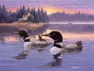 Loon Lake  Fine Art Print