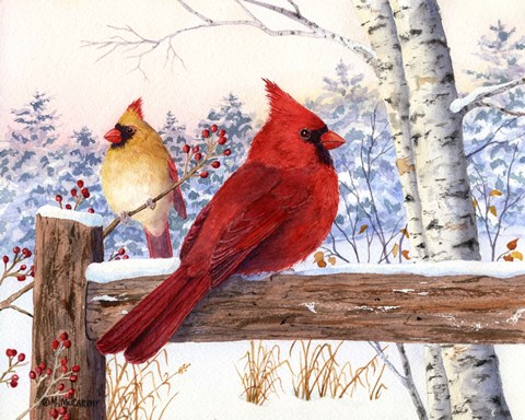 Cardinal Pair With Birch Fine Art Print By Maureen