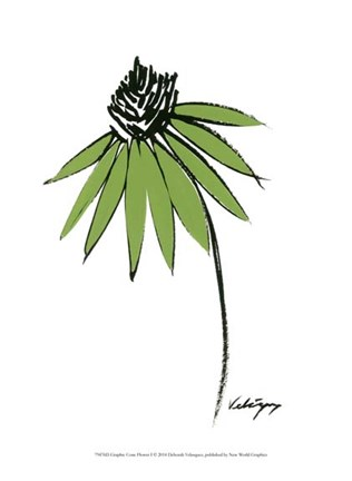 Framed Graphic Cone Flower I Print