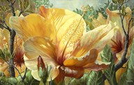 Golden Hibiscus Art