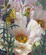 Prickly Poppies and Yellowtails  Fine Art Print
