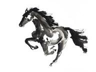 Horse H1  Fine Art Print
