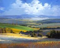 Fields  Fine Art Print
