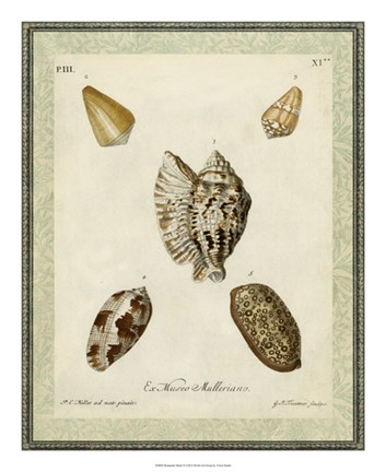 Framed Bookplate Shells II Print
