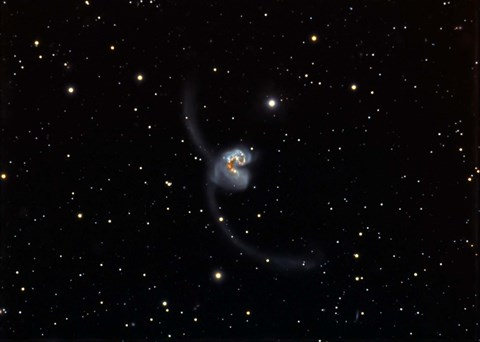 Framed Antennae (NGC 4038 and 4039), interacting pair of galaxies in Corvus Print
