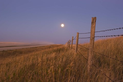 Framed Harvest Moon down the road, Gleichen, Alberta, Canada Print