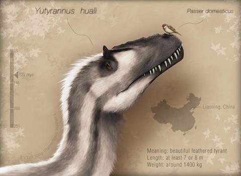 Framed Yutyrannus huali is a feathered tyrannosauroid from the Early Cretacous of China Print