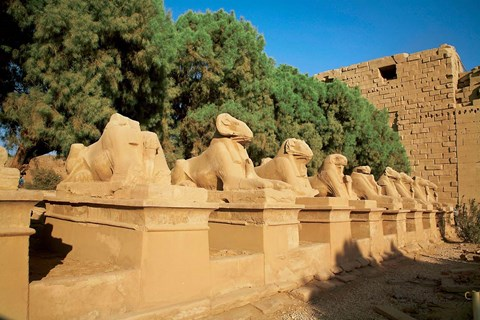 Framed Sphinxes, Temple of Karnak, Temple of Luxor, Avenue of Sphinxes, Luxor, Egypt Print