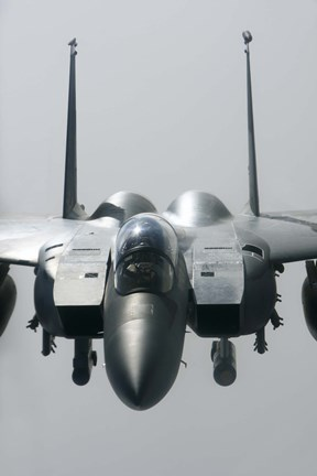 Framed Close View of F-15E Strike Eagle of the US Air Force Print