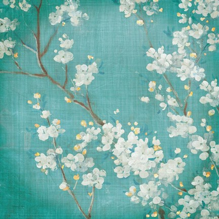 Framed White Cherry Blossoms II on Blue Aged No Bird Print