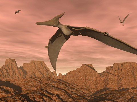Framed Three pteranodon dinosaurs flying above rocky landscape Print