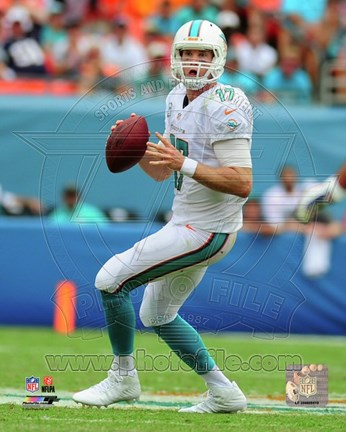 Framed Ryan Tannehill 2014 Action Print