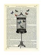 Bird Cage & Butterflies  Fine Art Print