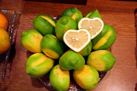 Framed Display of fresh heart shaped limes, Tokyo, Japan Print