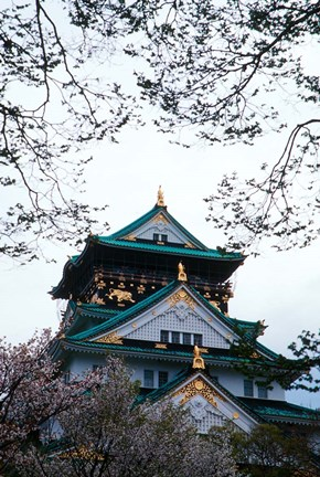 Framed Osaka Castle and Cherry Blossom Trees, Osaka, Japan Print