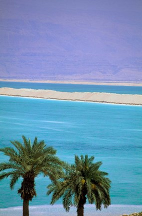 Framed Dead Sea, Israel Print