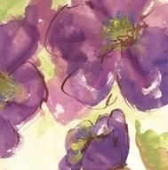 Radiant Flowers II  Fine Art Print