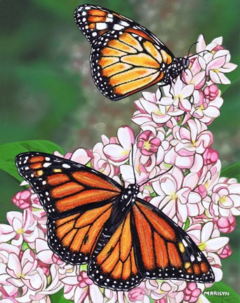 Framed Monarch Butterfly Print