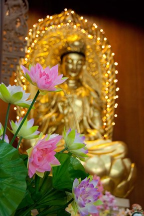 Framed Pink lotus flowers in front of gold statue, Kek Lok Si Temple, Island of Penang, Malaysia Print