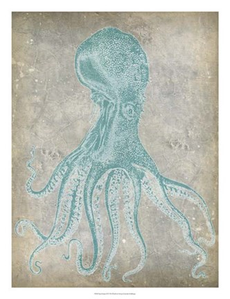 Framed Spa Octopus II Print