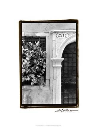 Framed Venetian Doorways IV Print