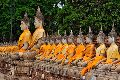 Framed Row of Buddha statues, Wat Yai Chaya Mongkol or The Great Temple of Auspicious Victory, Ayutthaya, Thailand Print